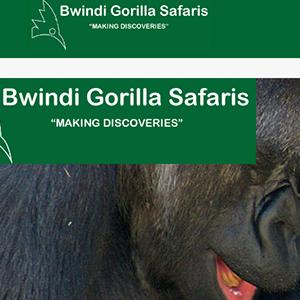 bwindi-gorilla-safaris